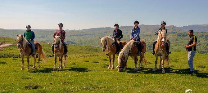 Cum a fost in prima tabara de echitatie Horse Riding Adventure
